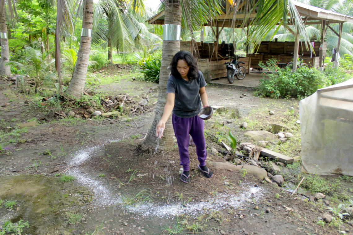 edna applying salt