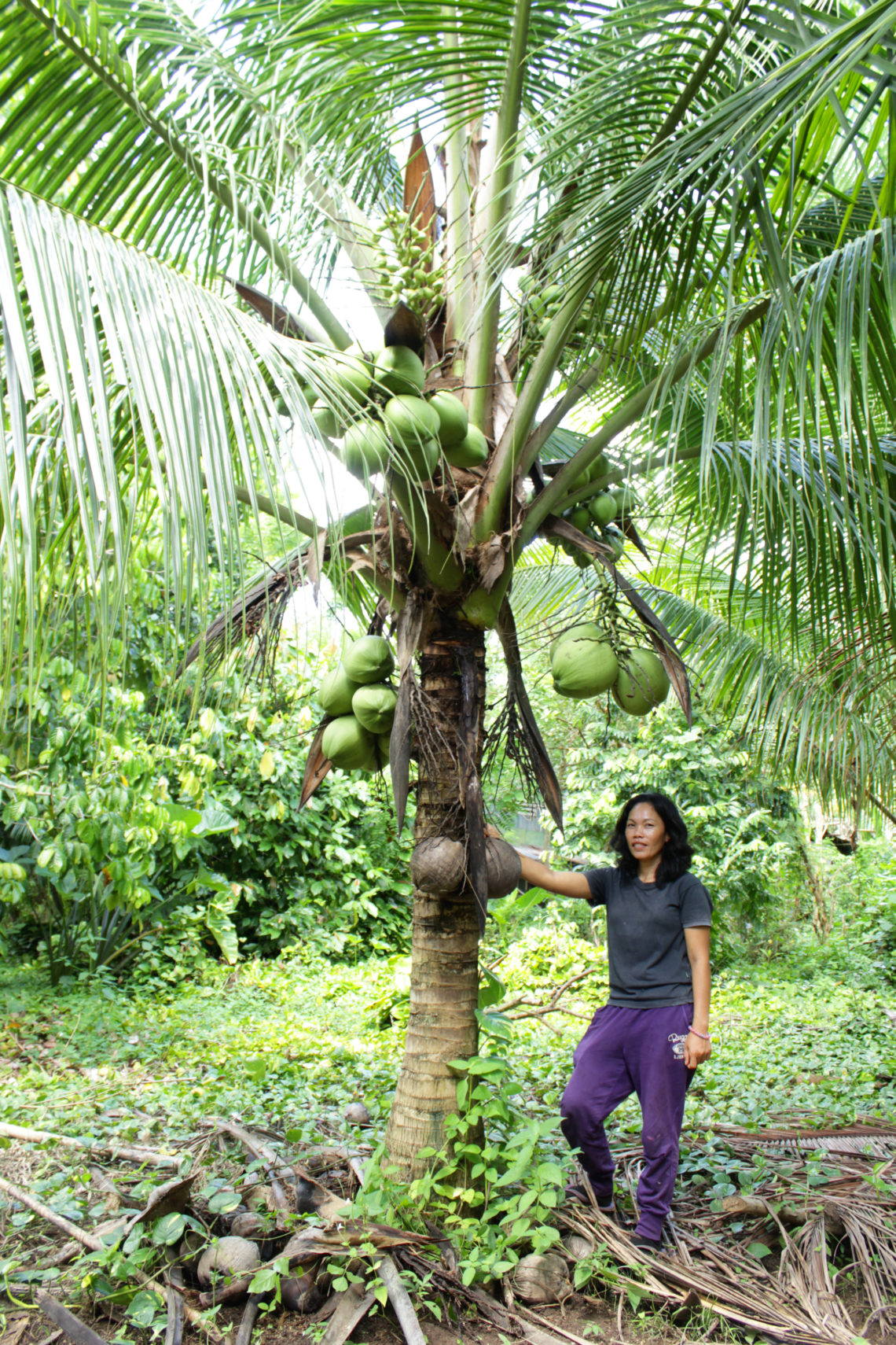 edna leaning on coconut tree
