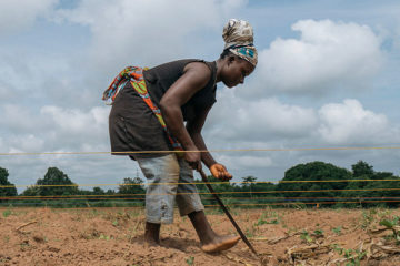 African women farmers at work