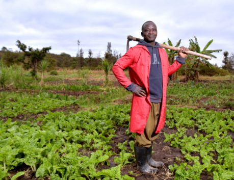 Digital Farming Households