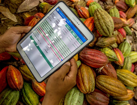 Tablet with farming plan