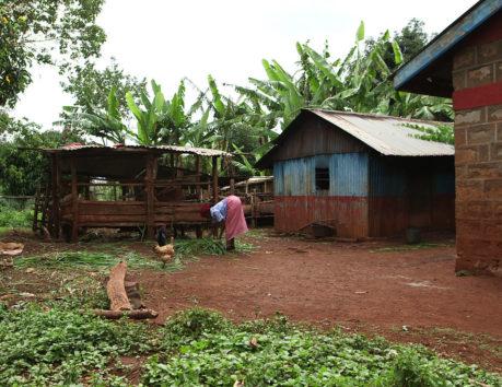 Grameen Foundation Kenya