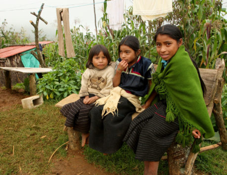 Grameen Foundation Mexico