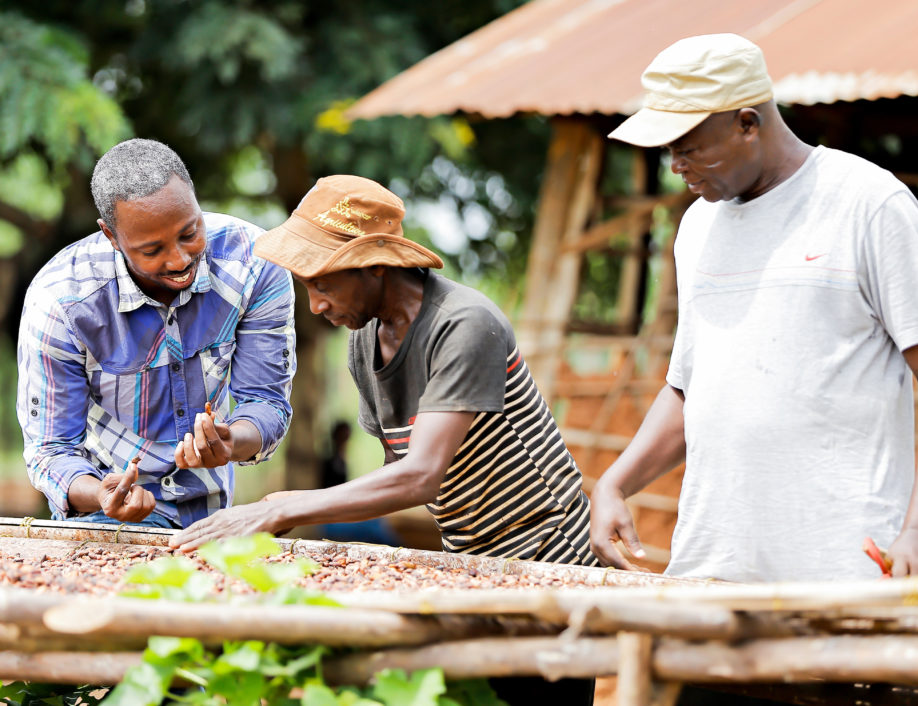 Agronomist and Grameen Community Agent train local farmers