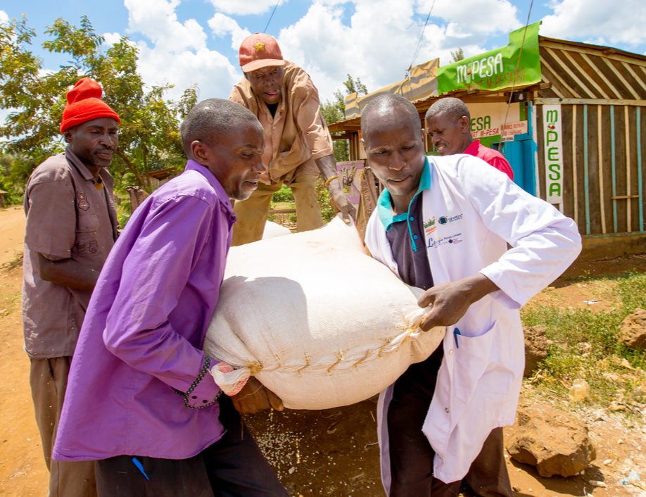 Smallholder Farmer Market Economy
